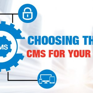 how to choose the right wordpress cms development company for your business website