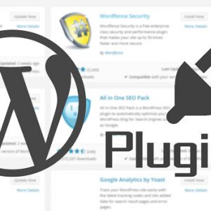an introduction to wordpress plugins