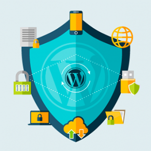 wordpress security you can learn it fast