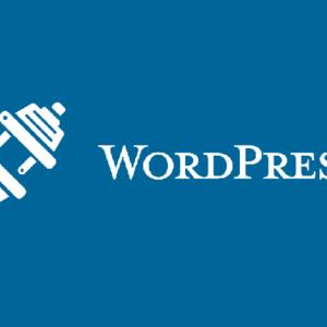 wordpress plugins the creative backbone of wordpress