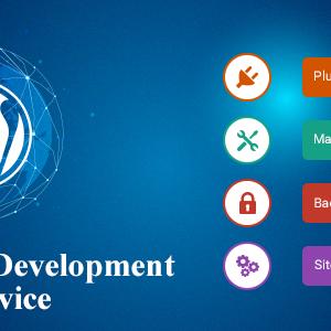offshore wordpress development services
