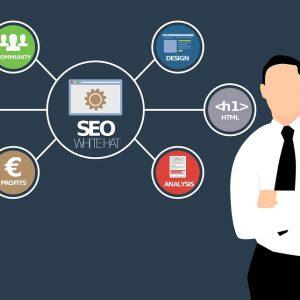 wordpress seo optimize your online exposure