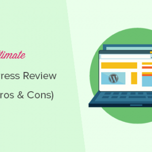 know how wordpress development can be the best choice for your online business