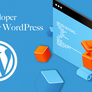 the five best wordpress plugins for a new site
