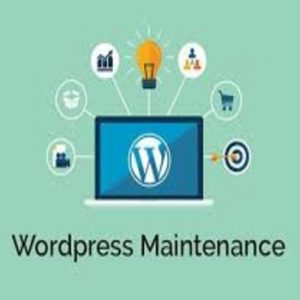 how to manage your wordpress website like a pro