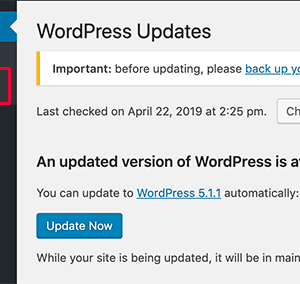 upgrade wordpress should you click the button
