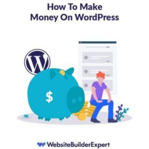 using the best wordpress plugin can help you make money