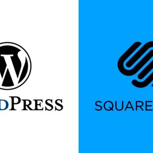 which platform is better for your business wordpress or squarespace