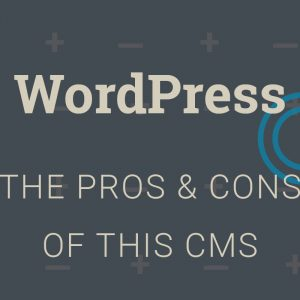 should you use wordpress as your cms the pros and the cons