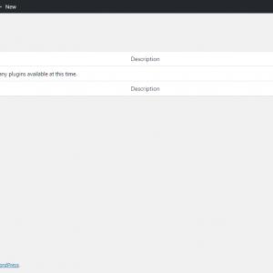 blank wordpress dashboard screen