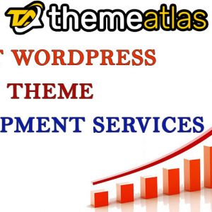 know why it is important to have the best wordpress theme development services