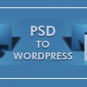 psd to wordpress conversion what the future holds for it