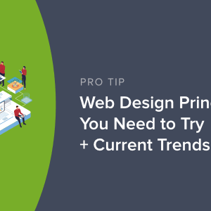 these 4 web design principles will improve your conversion rate