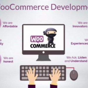 take your wordpress website to next level with woocommerce development