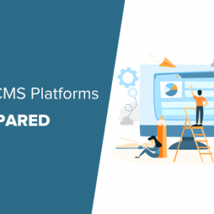 wordpress the best cms platform