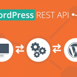 the importance of wordpress rest api