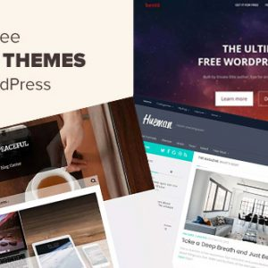 top 3 responsive themes for your wordpress blogs