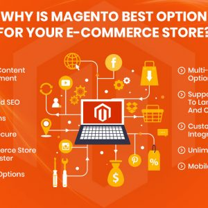 why magento is the best e commerce solution
