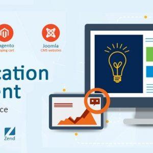 custom web application development taking your business one step ahead