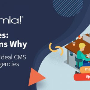 why joomla is an ideal cms for your website