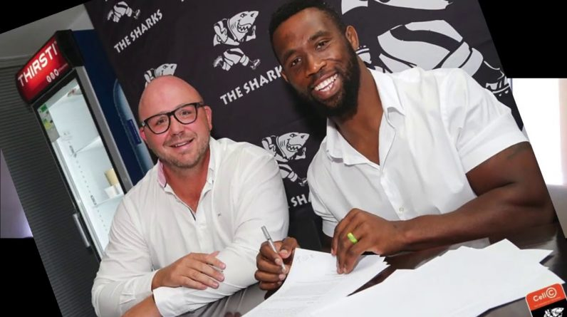 Why Sharks would have wanted Kolisi