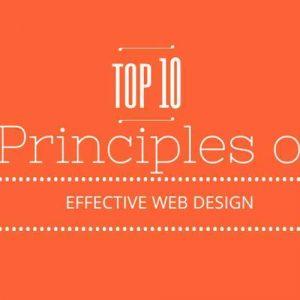 10 effective web design principles