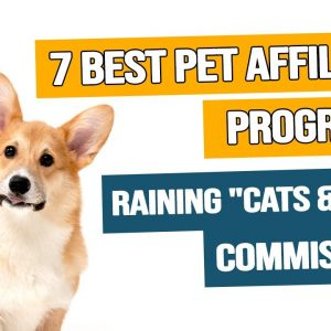 pet affiliate programs really great tips that will make the cash rain down like cats and dogs