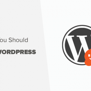 7 reasons to use wordpress